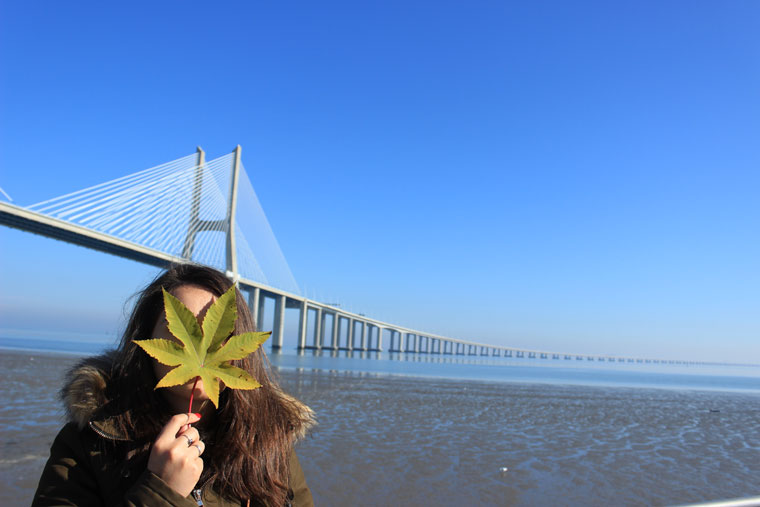 Under the Vasco da Gama Bridge - Where Two Go To c42b91974280f